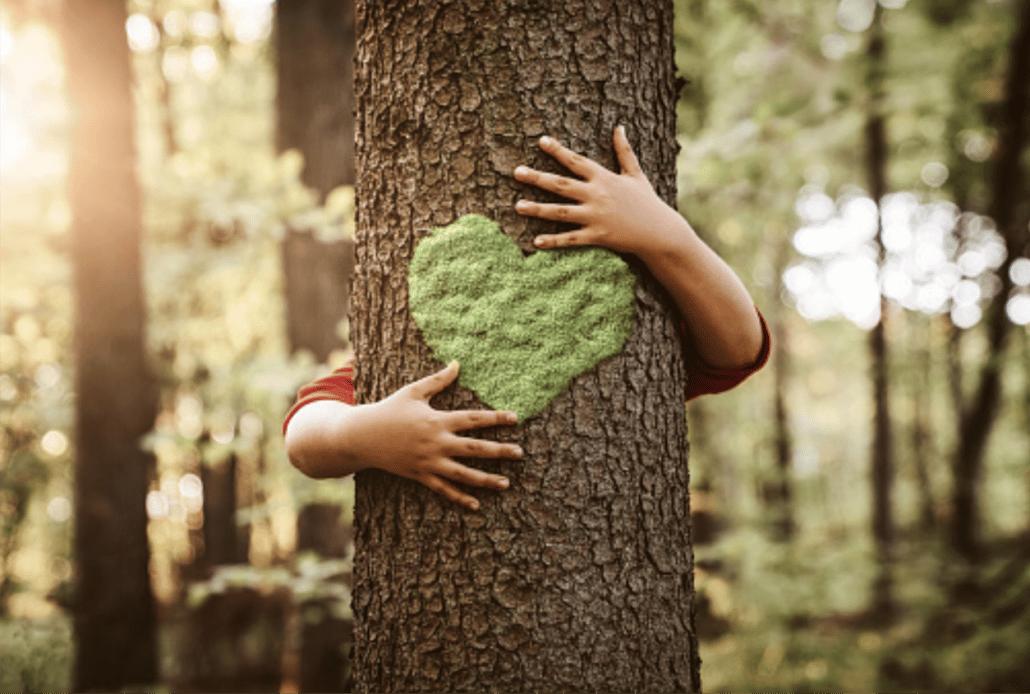 aimer la nature